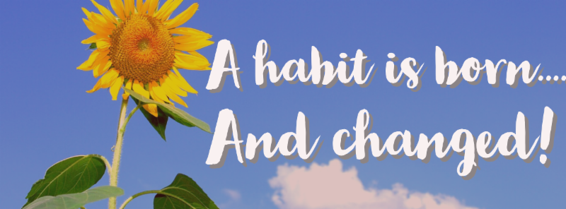 A habit is born... And changed!