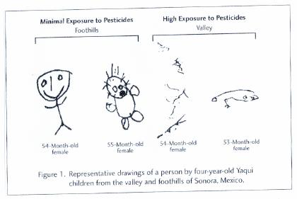 [Bimbi esposti a pesticidi e non.png] Bimbi esposti a...cidi e non.png (110.90 KB)