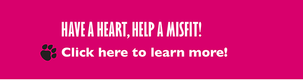 HAVE A HEART, HELP A MISFIT! Click here to learn more!