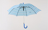 Don't Forget Your Brolly! Umbrella History And Facts