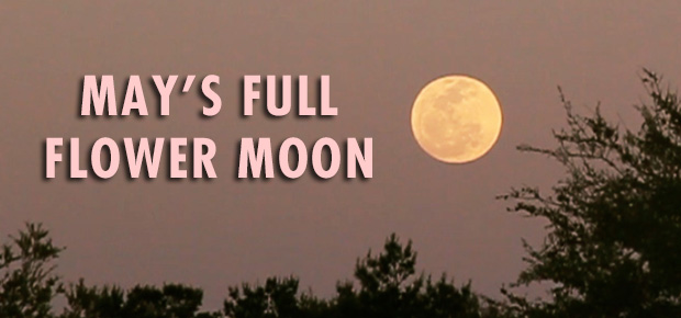 May's Full Flower Moon