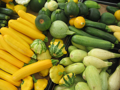 summer squash from the market