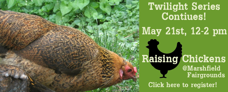 SEMAP Twilight Workshop: Raising Chickens