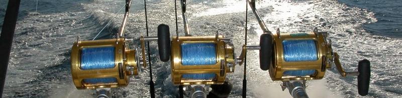 El Cid Fishing Rods
