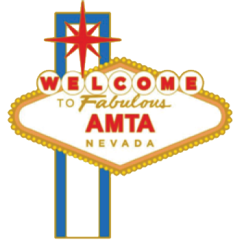 AMTA-NV 2018 pin