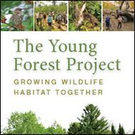 Click HERE for more information on The Young Forest Project