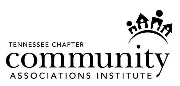 CAI Logo 1