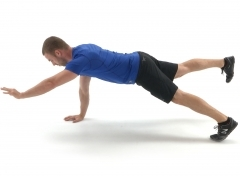 Bird Dog for core and low back illustration