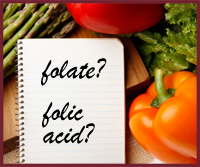 Folate and Folic Acid-What's the Difference?