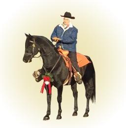 Renaissance Equestrian Society Rider