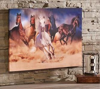 Canvas galloping horse herd print at Scott Colburn Boots and Western Wear