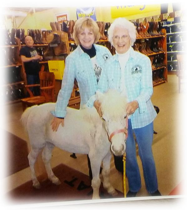 Snowberry the miniature horse at Scott Colburn Boots and Western Wear