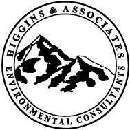 Higgins and Associates