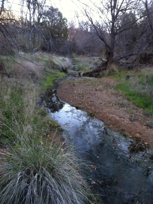 SAS Picnic at Horseshoe Ranch @ Horseshoe Ranch/Agua Fria National Monument   Glendale   Arizona   United States