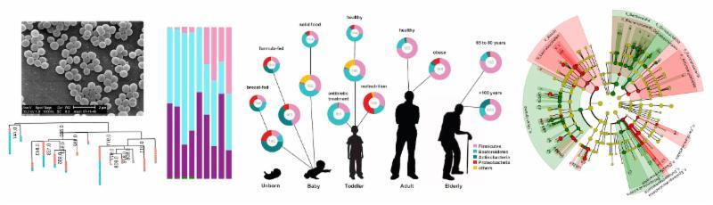 BioTech 75: Hands-on Training in Metagenomics Data Analysis