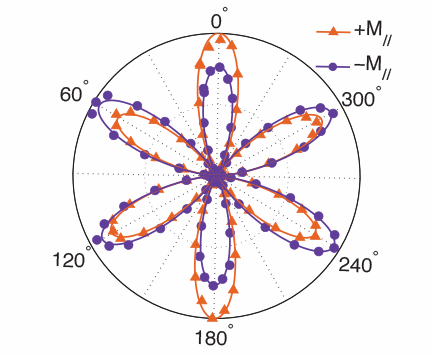 A flower-petal like graph illustrates how the direction of magnetism changes at the buried interface where thin films of europium sulfide and bismuth sulfide meet. Illustration, Changmin Lee.