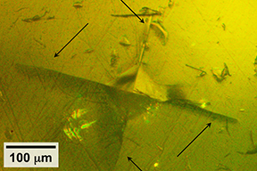 Using specialized equipment, the MIT team did tests in which they used a pyramidal-tipped probe to indent the surface of a piece of the sulfide-based material. Surrounding the resulting indentation (center), cracks were seen forming in the material.