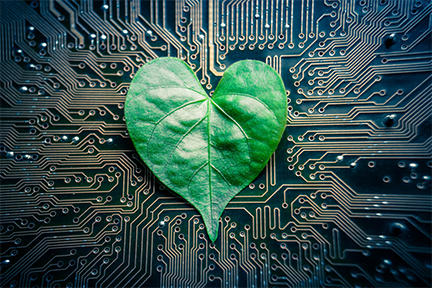 MIT engineers and their collaborators have designed a microfluidic device they call a tree-on-a-chip, which mimics the pumping mechanism of trees and other plants.