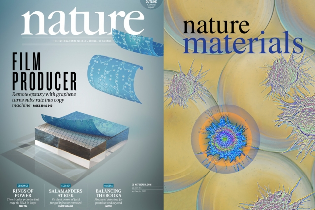 Felice Frankel_ a research scientist in MIT_s Center for Materials Science and Engineering_ has helped to produce images that just in the last few months have graced the covers of Nature_ Nature Materials_ and Environmental Science_ among others.