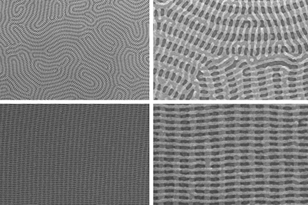 On the top row are two images of a nanomesh bilayer of PDMS cylinders in which the top layer is perpendicular to the complex orientation of the bottom layer.