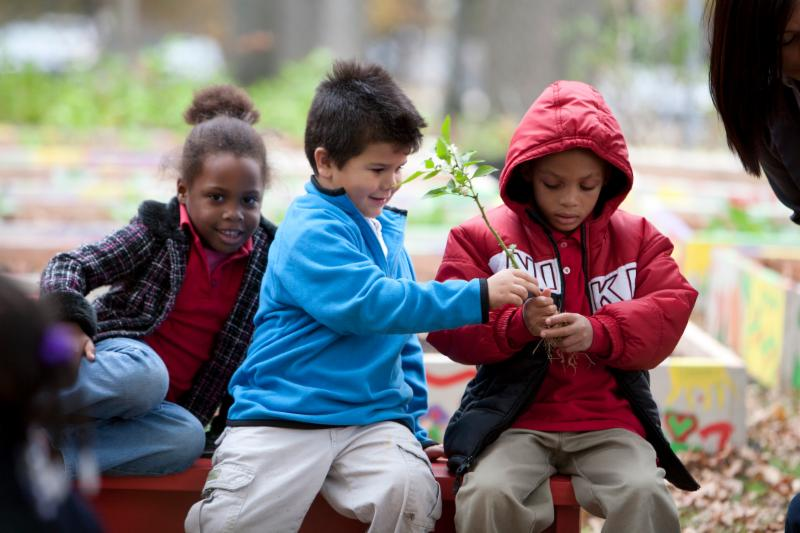 Children in Community Garden