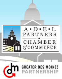 Adel_Partners_DSM_Partnership