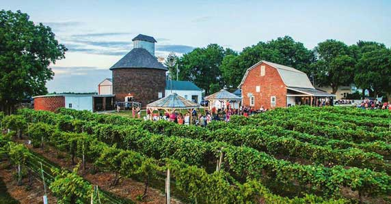 Penoach Winery