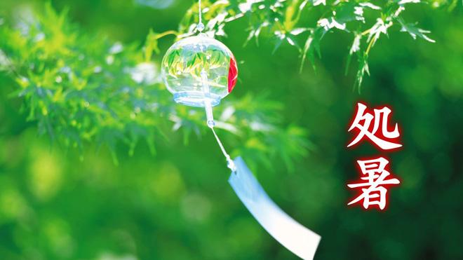 Shosho  End of Summer