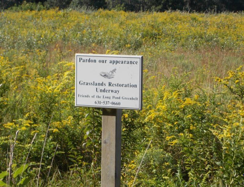 Vineyard Field Grassland Restoration sign