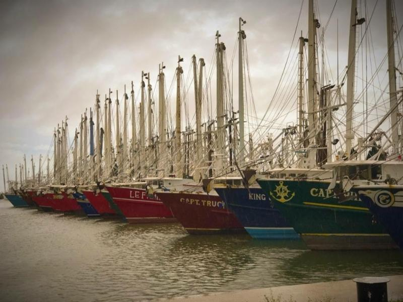 SSA Hopes Shrimpers Stay Safe During Hurricane Harvey