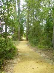 Herman Little Park