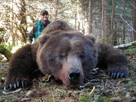 Save 4 000 On Brown Bear Hosted Hunts