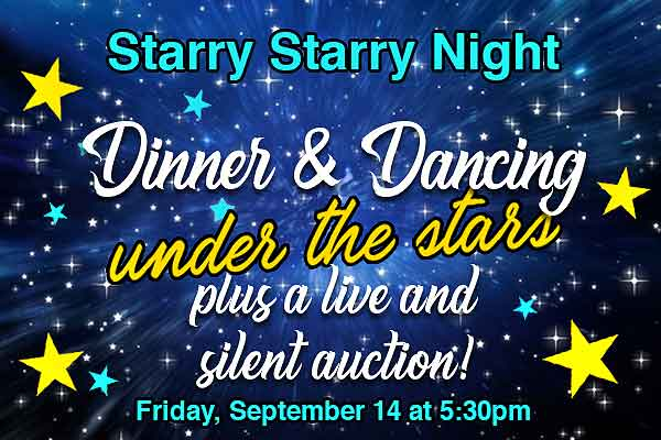 Dinner and Dancing Under the Stars with live and silent auction