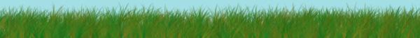 grass-banner2.jpg