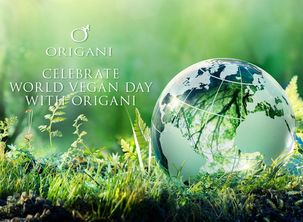 large-Origani-World-Vegan-Day-Blog-1125x827px.jpg