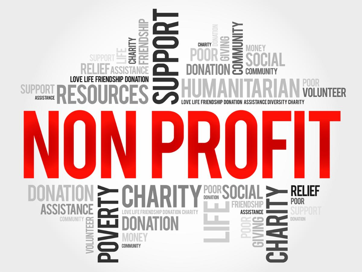 nonprofit webinar icon