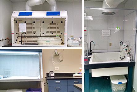 Sampling Equipment Decontamination Clean Room