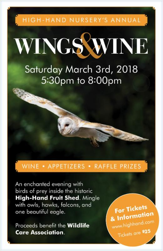 2018 Wings & Wine Event