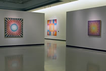Installation view Why Not Judy Chicago?