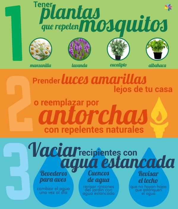 combate el dengue y otros mosquitos