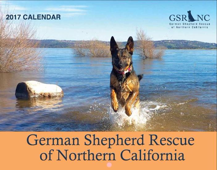 German Shepherd Rescue Of Northern California 2017 Calendar