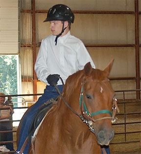 Shane_ AMHA Therapy Horse of the Year