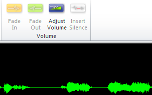 Silence audio in Lectora