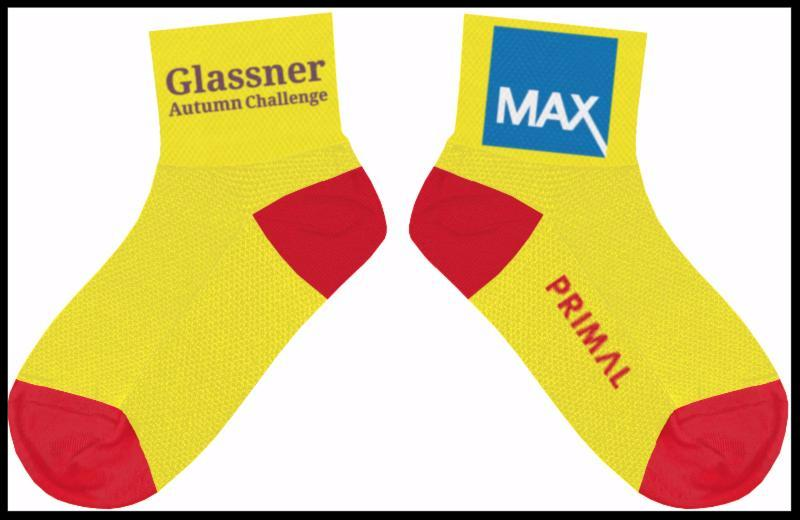 2016 Glassner MAX Socks