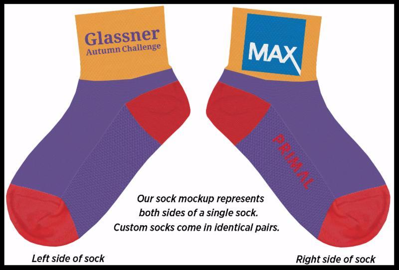 2017 Glassner Socks
