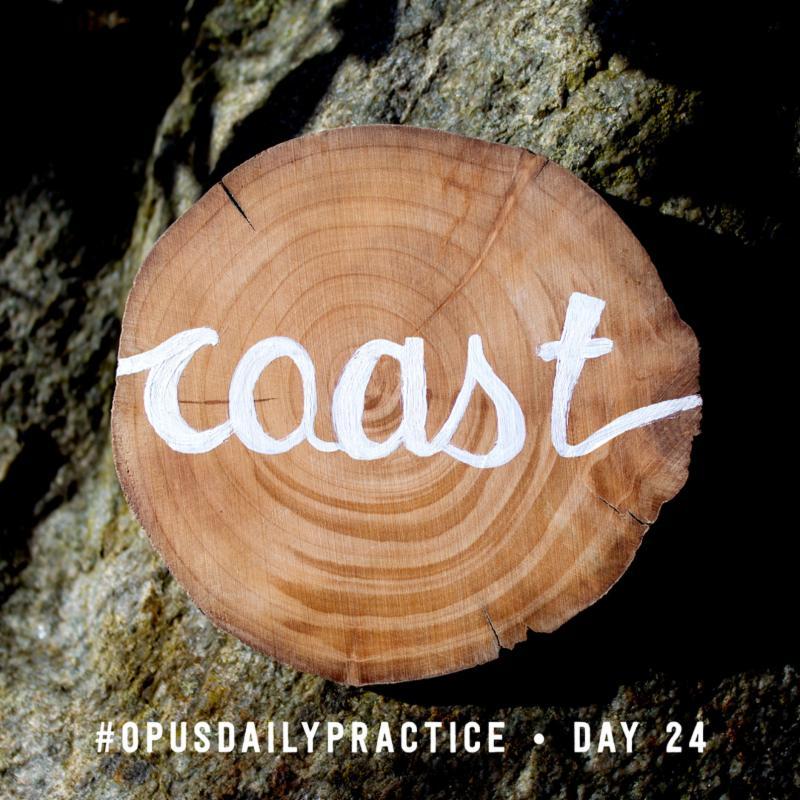 Day 24: Coast