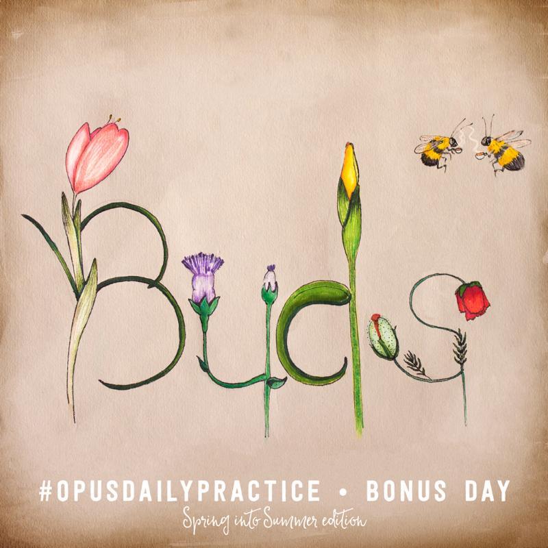 Day 8: Buds