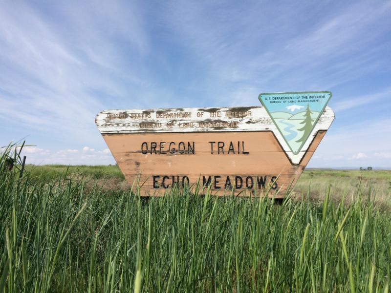 Oregon Trail - Echo