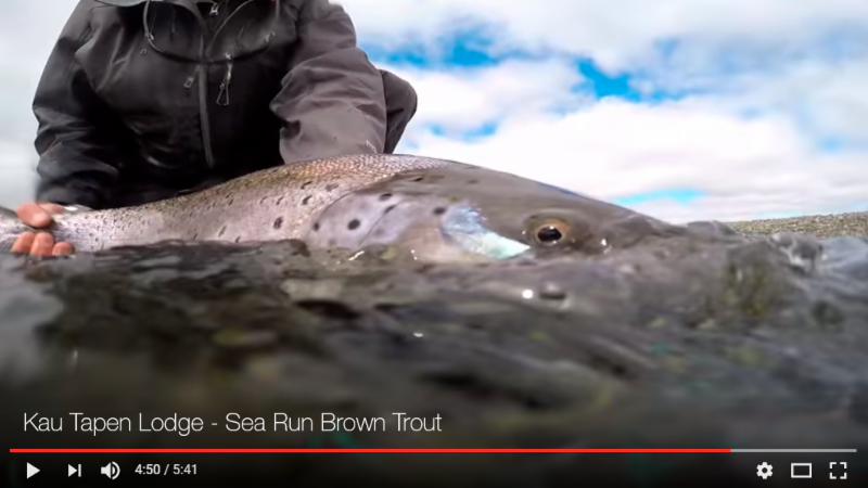 Rio Grande, Argentina: Best river in the world to fish for