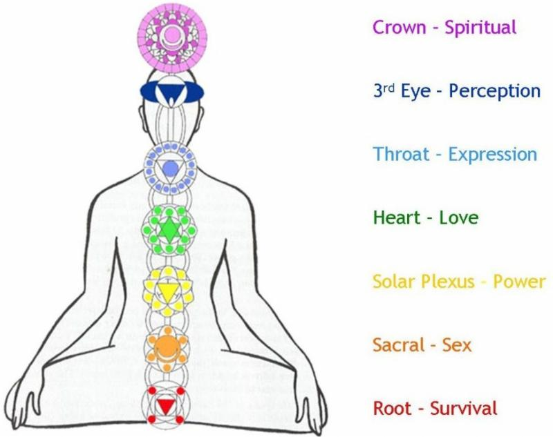 Yoga Workshop: Chakras, Fascia, and Sound Healing; The Science and ...